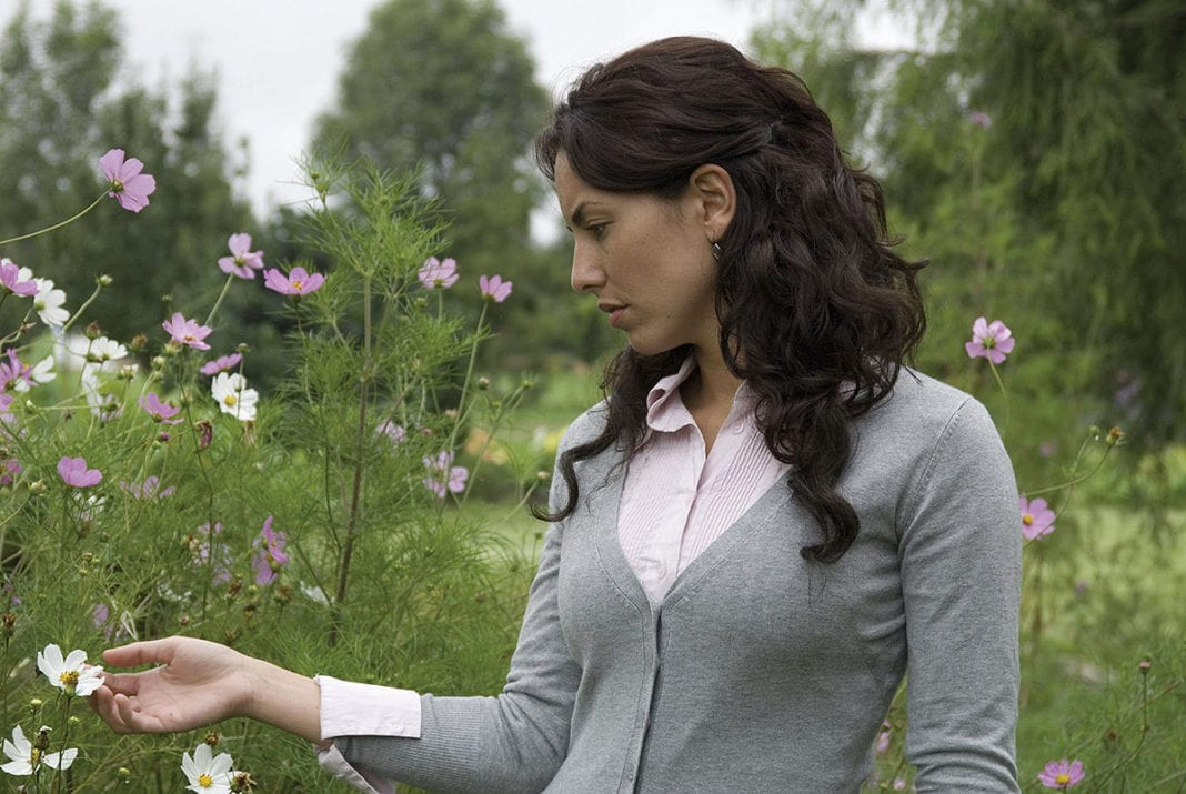 Cosas insignificantes (2008)