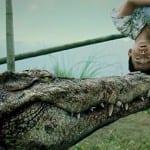 Las últimas tendencias del cine fantástico llegan a Nocturna 2013