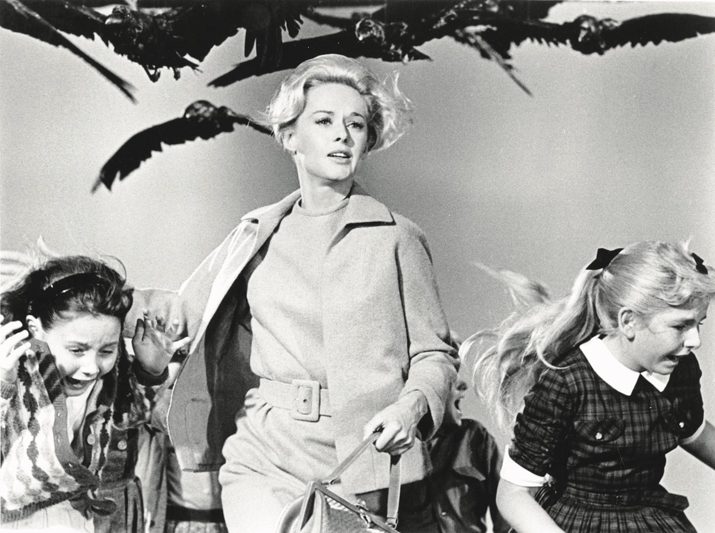 Los pájaros, de Alfred Hitchcock