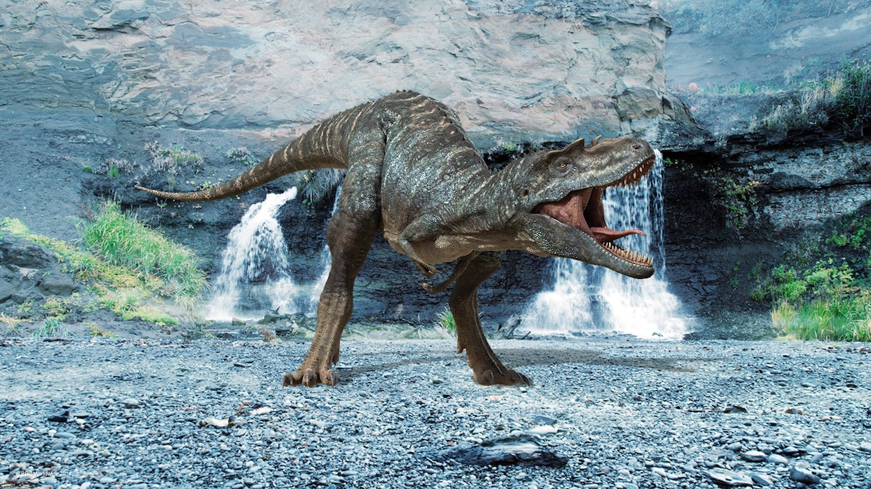 Caminando Entre Dinosaurios La Pelicula Din Dong Los Saurios Critica