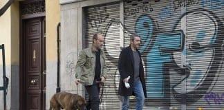 Ricardo Darín y Javier Cámara en Truman (Cesc Gay, 2015)