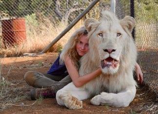 Mia y el león blanco (2018) de Guilles de Maistre