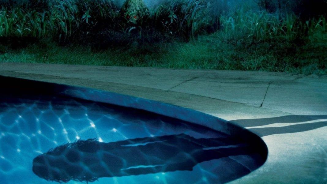 La joven del agua (2006)